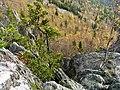 G. Zlatoust, Chelyabinskaya oblast', Russia - panoramio (13).jpg