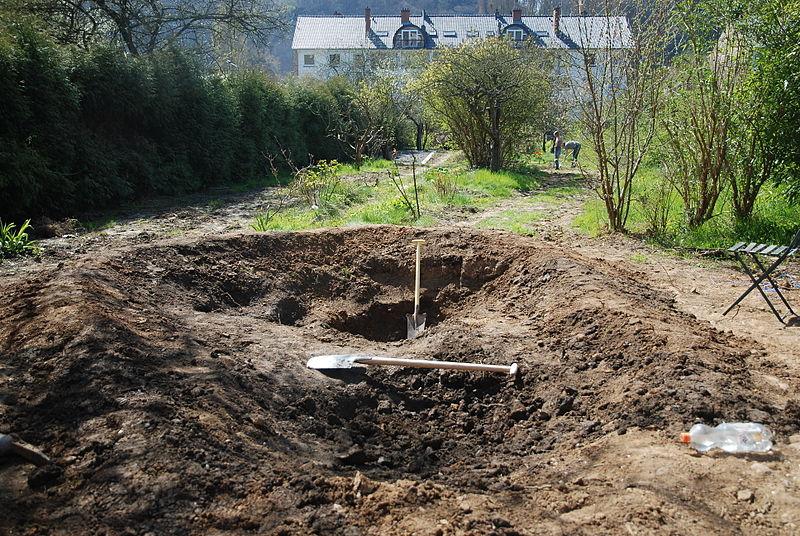 File:Garden Pond 1.JPG