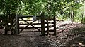Gate on bridleway on Black Down - geograph.org.uk - 1414555.jpg