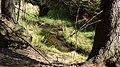 Gelobtbachtal, údolí Klopotského potoka - panoramio (12).jpg
