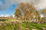 Georgensgmünd Jüdischer Friedhof HaJN 3763.jpg