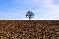 Gerendal Limburg (2391861539).jpg