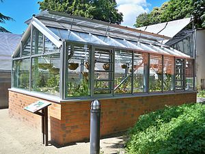 greenhouse for carnivorous plants in the botan...