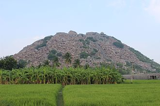 Gingee Fort - Gingee Fort Hill view from road