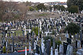 Glasnevin Cemetery, officially known as Prospect Cemetery (4163858163).jpg