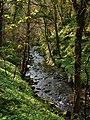 Glen Maye - geograph.org.uk - 773035.jpg