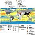 Global microplastic abundance at the ocean surface (ArcGIS).jpg