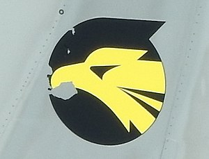 306th Tactical Fighter Squadron (JASDF) - Tail marking (2016)