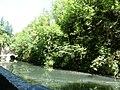 Gorges de la Bourne - Villard-de-Lans (38).jpg