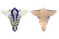 Graduation-Badge-NP-Pre-WWII-Estonia-Roman-Tavast-004.jpg