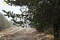 Gralhas, 5470, Portugal - panoramio (9).jpg
