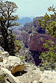 Grand Canyon North Rim03.jpg