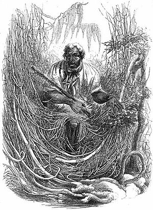 Great Dismal Swamp maroons - Osman, a Great Dismal Swamp Maroon, by David Hunter Strother, 1856