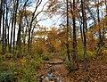 Green Spring Gardens in October (22373087028).jpg