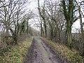 Green lane, Deepmoor - geograph.org.uk - 315104.jpg