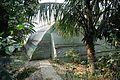 Greenhouse - Ramakrishna Mission Ashrama - Sargachi - Murshidabad 2014-11-29 0232.JPG