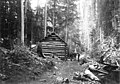 Group of men in front of a log cabin in the woods, 1900-1910 (WASTATE 3110).jpeg