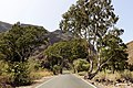 Guayadeque carreteras.jpg