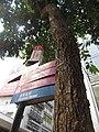 HK CWB 銅鑼灣 Causeway Bay 渣甸街 Jardine's Bazaar tree trunk bark stem skin October 2017 IX1 sign.jpg