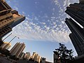 HK SSP 長沙灣 Cheung Sha Wan 荔枝角道 Lai Chi Kok Road December 2019 SS2 09 blue sky view.jpg
