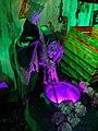 Halloween witches.jpg