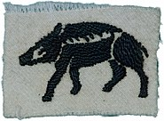 Hampshire County Division Insignia