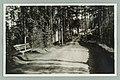 Harjutie, Nervanderin kumpu, ADAM circa 1930 PK0133.jpg