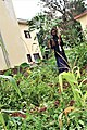 Harvested Yams in Bafia - Cameroon.jpg
