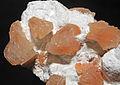 Heulandite-(Ca), mordénite 1.JPG