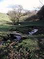 High Birks Beck, Upper Headley - geograph.org.uk - 358732.jpg