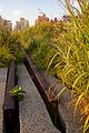 High Line, New York 2012 33.jpg