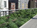 High Line, New York City (2014) - 02.JPG