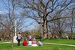 High Park, Toronto DSC 0250 (17391574072).jpg
