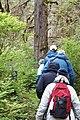Hikers, Kupreanof Island 01.jpg
