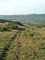 Hill Path - geograph.org.uk - 594652.jpg