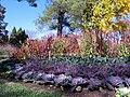 Hillwood Gardens in November (15366872123).jpg