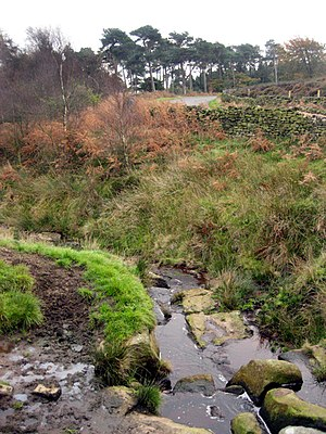 River Hipper - At this point the Hipper comes off Beeley Moor and flows towards Holymoorside, becoming the river Hipper on the way