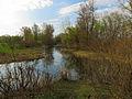 Hlyboke lake Muromets3.JPG