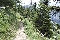 Hoher Kasten - panoramio (150).jpg