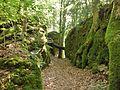 Hollederberg 1 - panoramio.jpg
