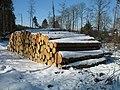Holzstapel01 2010-03-07.jpg