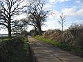 Hookshouse Lane - geograph.org.uk - 320082.jpg
