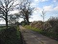 Hookshouse Lane - geograph.org.uk - 320082.jpg