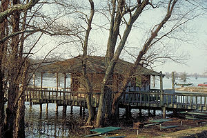 Horseshoe Lake, Arkansas - A marina house on the lake built on stilts.