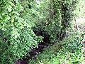 Hurley Brook, Eyton upon the Weald Moors - geograph.org.uk - 1319104.jpg