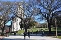 ID 181 Plaza San Martín 5339.jpg