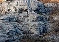 """Il gigante della V.Rosandra....fà la guardia alla valle""""il Volto di Pietra"""" - panoramio.jpg"""