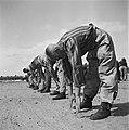 In het strafkamp te Vught, zijn 7000 Nederlandse collaborateurs en landverraders, Bestanddeelnr 900-4270.jpg