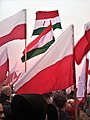 Independence March 2018 Warsaw (4).jpg