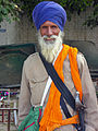 India-0418 - Flickr - archer10 (Dennis).jpg